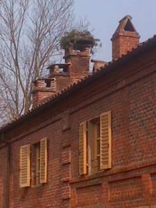 Una casa per la Cicogna alla Mandria