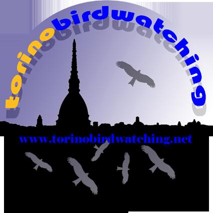 Mangiatoie e Birdgardening