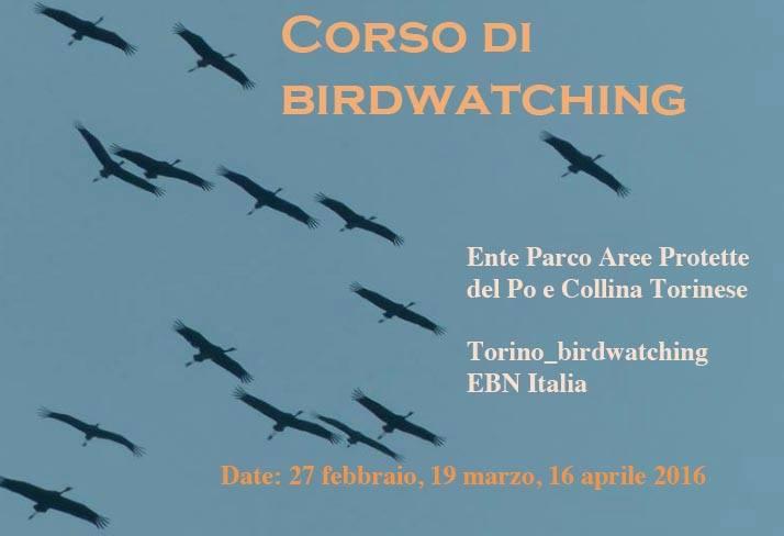 Corso di Birdwatching 2016