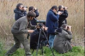 Corso base di birdwatching 2014