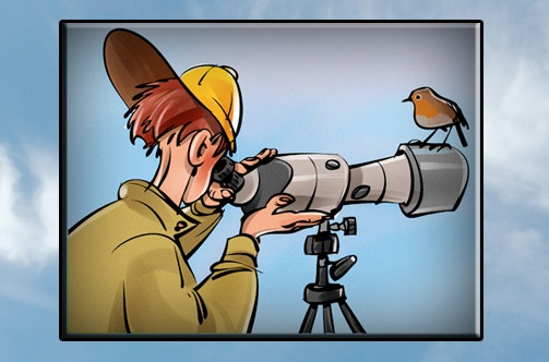 Le serate del Birdwatching